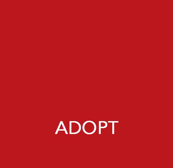 Adopt-Paw