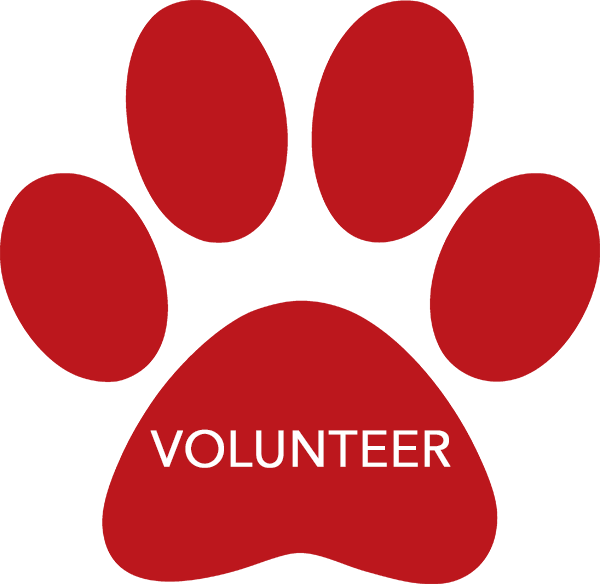 Volunteer-Paws