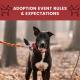 dogstar-adoption-eventrules